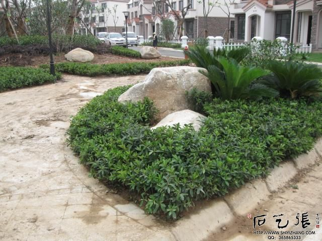 花坛放置景观石头