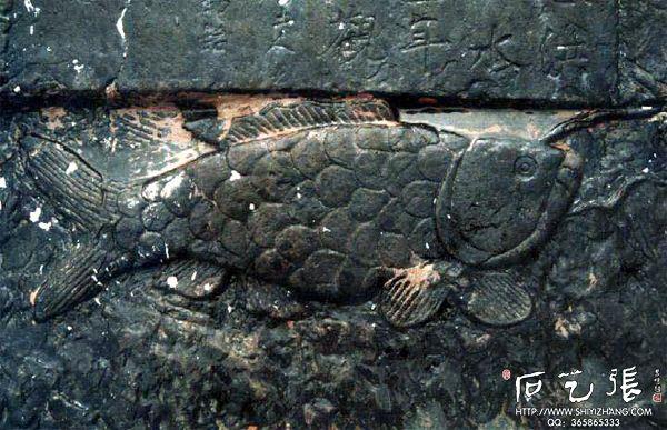 白鹤梁石刻水文鱼