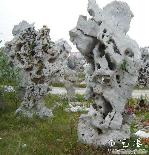 江苏太湖石
