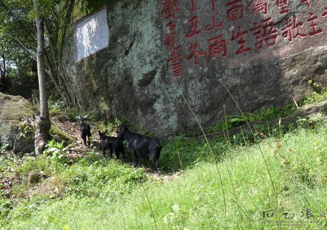 仙羊塞山摩崖石刻