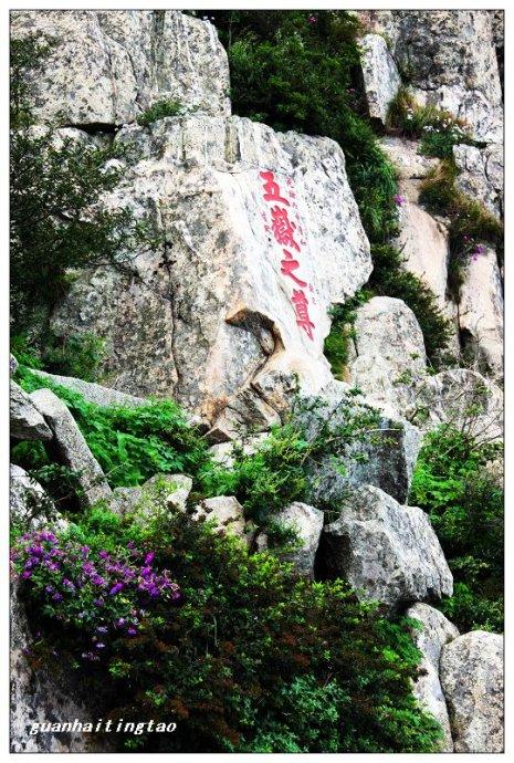 泰山石刻《五岳独尊》