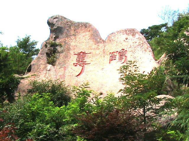 鹤寿摩崖石刻