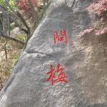 《问梅》石头刻字
