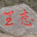 石头刻字-生态