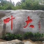 景观石刻字《叶大》
