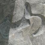 石头刻字细节.jpg